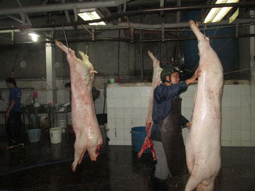 Giết mổ thủ công khó bảo đảm chỉ tiêu vi sinh cho sản phẩm thịt