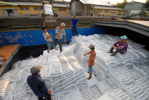 Sẽ giảm vai trò của VFA trong xuất khẩu gạo - Ảnh 1.