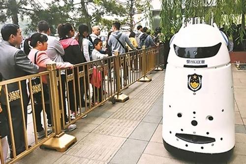 Cảnh sát robot - Ảnh 1.