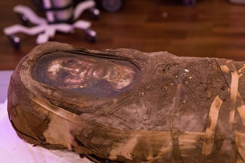 Vén màn xác ướp Ai Cập - Ảnh 1.