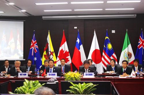 Họp tận đêm, các bộ trưởng đồng thuận về nguyên tắc cho TPP-11 - Ảnh 2.