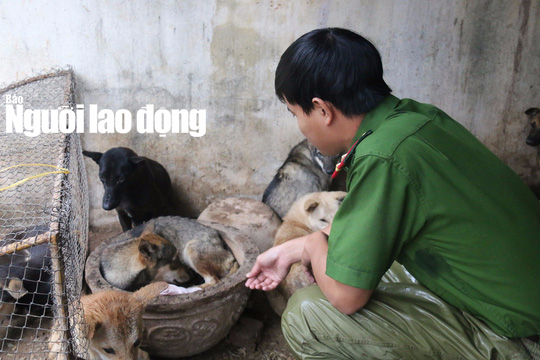 Được cứu khỏi cẩu tặc, 2 chú cún chào đời tại trụ sở công an - Ảnh 4.