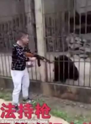 Du khách Trung Quốc giết gấu bằng súng máy - Ảnh 2.
