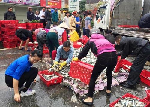 Người dân giúp tài xế thu gom cá trên đường