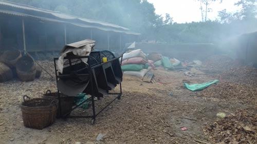 Cơ sở sản xuất cau chui toàn lao động Trung Quốc - Ảnh 1.