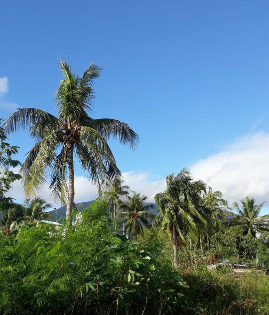 CLIP: Đã có 11 tàu cá bị vỡ ở Côn Đảo vì bão số 16 - Ảnh 2.