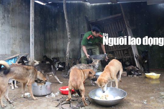 Được cứu khỏi cẩu tặc, 2 chú cún chào đời tại trụ sở công an - Ảnh 2.
