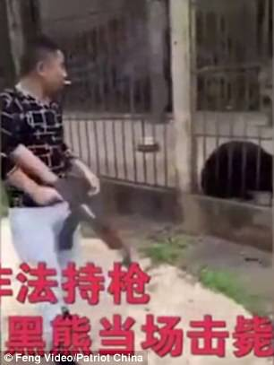 Du khách Trung Quốc giết gấu bằng súng máy - Ảnh 3.