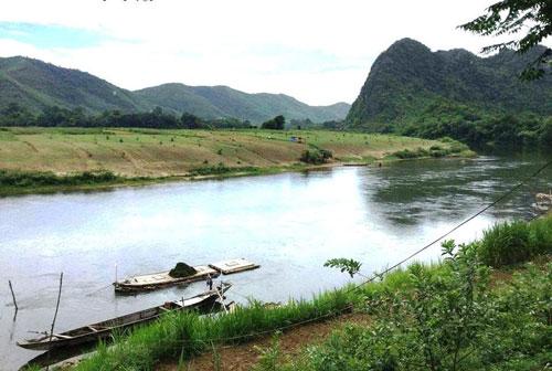 Ở các sông miền Trung, hiện ốc bươu vàng đang phát tán nhanh chóng. Trong ảnh: Một đoạn của sông Gianh (Quảng Bình) đang có rất nhiều ốc bươu vàng Ảnh: Duy Cường