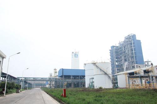 """Dự án Nhà máy Sản xuất đạm Ninh Bình - một trong 12 dự án nghìn tỉ """"đắp chiếu"""" của Bộ Công Thương Ảnh: Hoài Dương"""