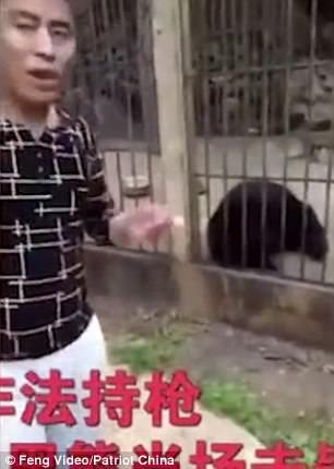 Du khách Trung Quốc giết gấu bằng súng máy - Ảnh 5.