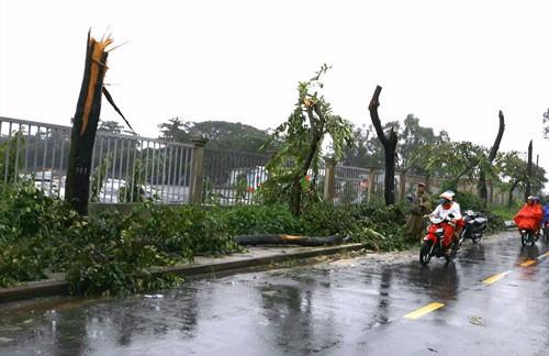 Mưa gió đe dọa nhiều tỉnh, thành - Ảnh 1.