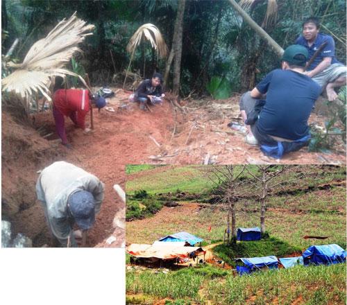 Ảnh lớn: Khu vực rừng ở xã Xuân Lẹ, huyện Thường Xuân bị xới tung để tìm đá quý  Ảnh nhỏ: Các lán trại khai thác vàng trái phép tại xã Thạch Cẩm, huyện Thạch Thành