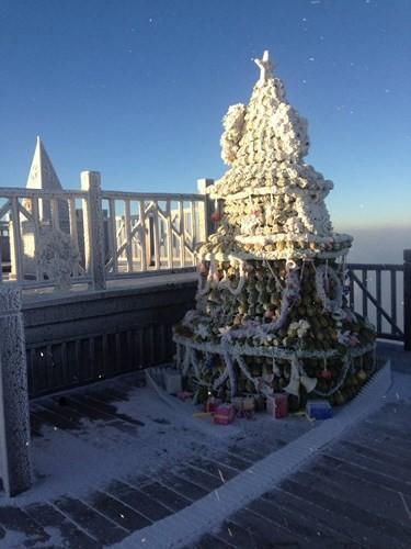 Cận cảnh đỉnh Fansipan trắng xóa trong băng tuyết - Ảnh 6.