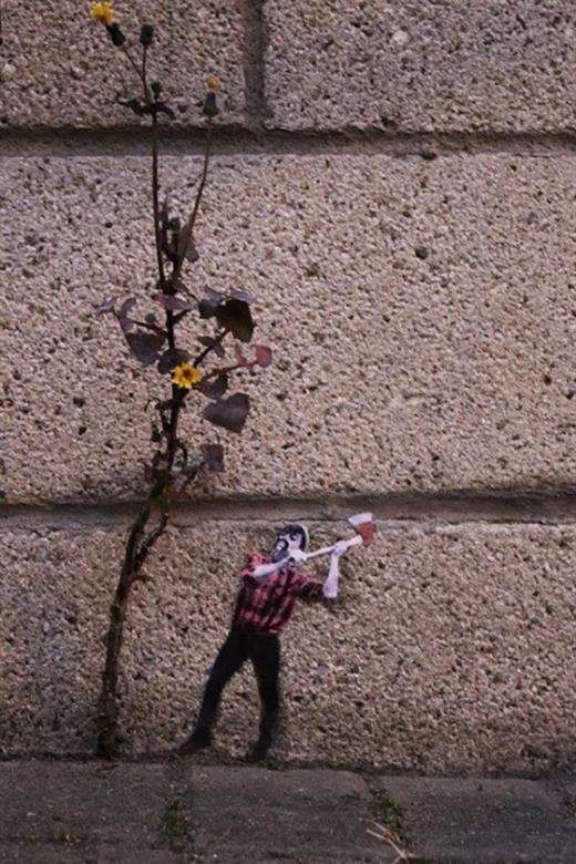 Không phải cây hoa dại nào cũng được… nâng niu đâu nhé! Bằng chứng là có anh chàng đang lăm le đòi đốn hạ cây hoa mỏng manh tội nghiệp ven đường. May mắn thay đây cũng chỉ là… hình hù dọa!