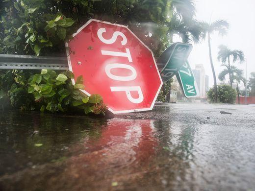 Cây cối, biển báo ở Miami bị giật đổ. Ảnh: USA TODAY.