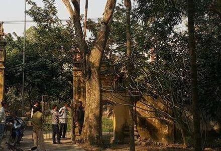 Ly kỳ vụ mua bán cây sưa 24,5 tỉ ở Bắc Ninh - Ảnh 1.