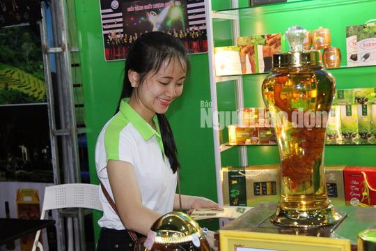 Sâm Ngọc Linh gần 100 triệu/kg vẫn đắt như tôm tươi - Ảnh 8.