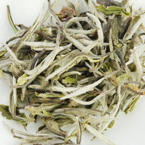 Bạch trà đắt nhất thế giới có gì đặc biệt? - Ảnh 8.