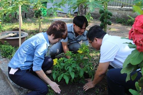 Công nhân và Ban Giám đốc Công ty CP Bông Bạch Tuyết trồng cây xanh trong khuôn viên công ty