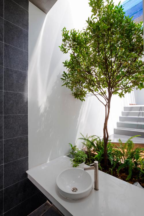 Gia chủ Bình Dương làm sân vườn lung linh nắng giữa nhà - Ảnh 9.