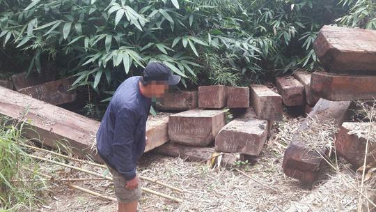 Khởi tố vụ gỗ vứt đầy đường biên ở Kon Tum - Ảnh 2.