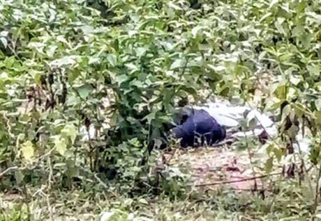 Chăn trâu, phát hiện người đàn ông chết nằm sấp trong bụi cây - Ảnh 1.