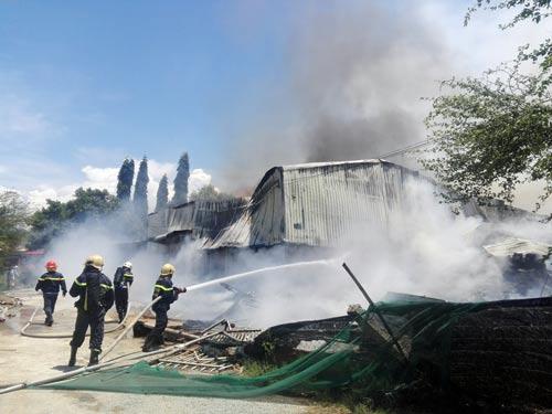 Cháy rụi nhà máy chế biến bã mía hơn 1.000 m2 - Ảnh 1.