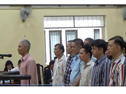 Bảy đại gia thủy sản hầu tòa - Ảnh 1.