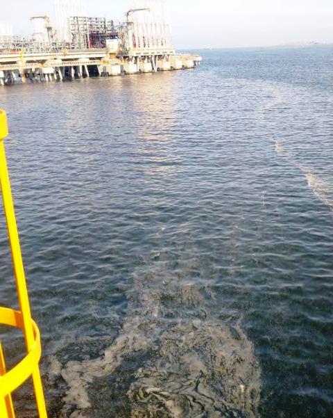 Vệt nước xuất hiện tai cảng Nghi Sơn - Thanh Hóa - Ảnh người dân cung cấp