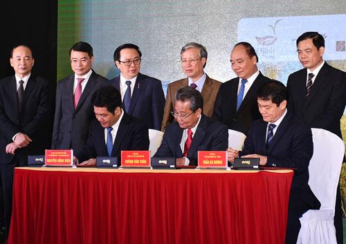 Cấp giấy chứng nhận đầu tư cho doanh nghiệp vào lĩnh vực nông nghiệp tại Thái Bình Ảnh: Quang Hiếu