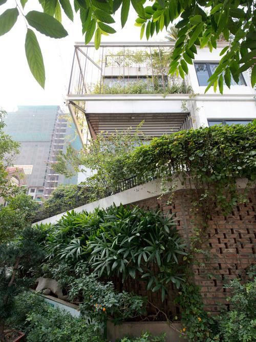 Nhà 3 tầng ẩn mình trong tán cây