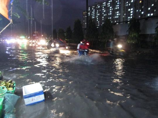 Bão số 14 gây mưa to gió lớn ở TP HCM - Ảnh 17.
