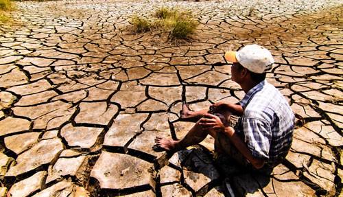 ĐBSCL đói vốn ứng phó biến đổi khí hậu - Ảnh 1.