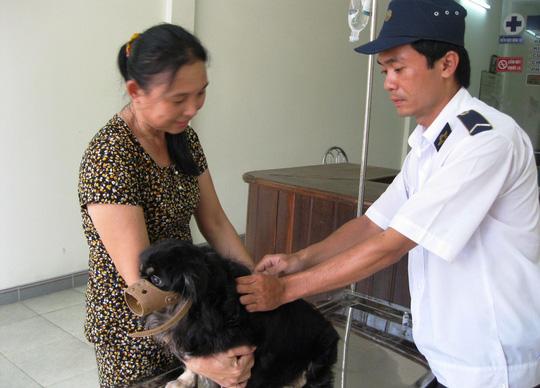 Tiêm phòng cho chó ở huyện Tuy An, tỉnh Phú Yên để ngăn ngừa bệnh dại lây lan - Ảnh: Hồng Ánh