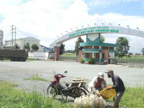 Nhà máy Bột giấy Phương Nam, một trong 12 dự án thua lỗ làm tiêu hao ngân sách nhà nướcẢnh: Hoàng Minh