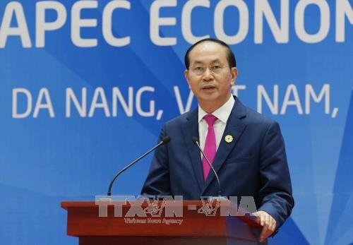 Chủ tịch nước: Thông qua Tuyên bố Đà Nẵng tại APEC 2017 - Ảnh 1.