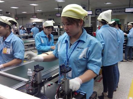 Chỉ 24% lực lượng lao động tham gia BHXH - Ảnh 1.