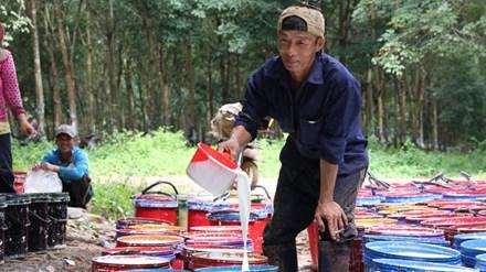 Lao động Việt Nam tại Lào Ảnh: nguồn Internet