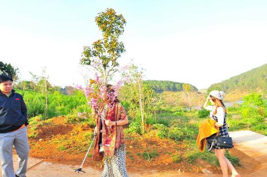 Hình ảnh bà Hiếu cầm bó hoa anh đào để chụp hình