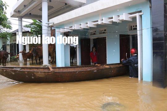 Lũ Quảng Ngãi vượt đỉnh lịch sử, Quảng Nam thêm 7 người chết - Ảnh 2.