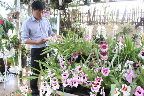 Soái ca hoa lan ở Đà Lạt - Ảnh 2.