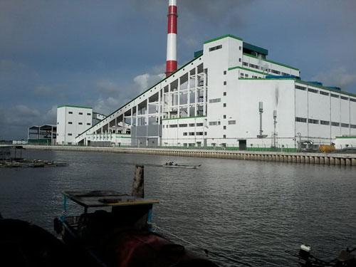 Tỉnh Hậu Giang có chủ trương nuôi cá tại ống xả thải của Nhà máy Giấy Lee & Man.Ảnh: CÔNG TUẤN