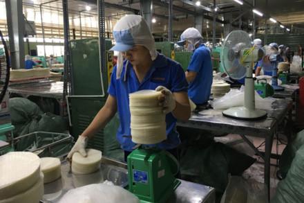 Công ty Thuận Phong hiện có hơn 1.600 công nhân và đa số đều phải thuê nhà trọ để ở. Ảnh: CAO HÙNG