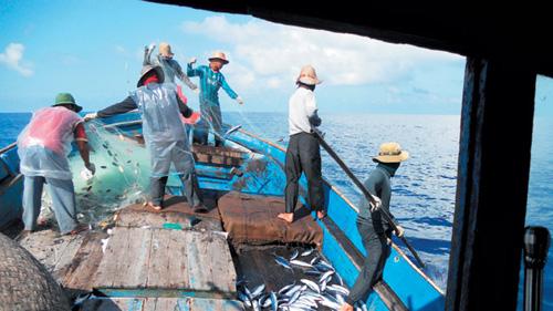 Ngư dân Quảng Ngãi đang đánh bắt cá ở vùng biển thuộc quần đảo Hoàng Sa - Ảnh: Phạm Tấn Huých