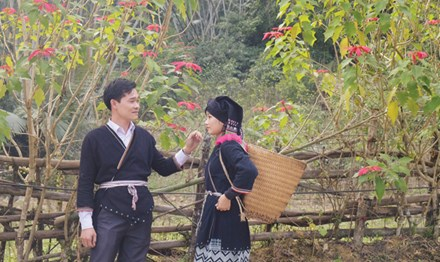 Một cặp đôi người Dao ở Xuân Sơn trong trang phục truyền thống.