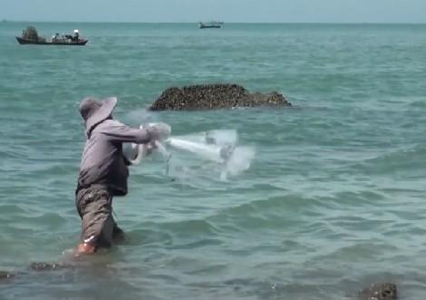 Quăng chài bắt cá đối.