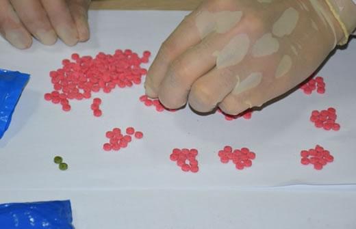 Trần Thị Ngọc Anh và số ma túy bị thu giữ.