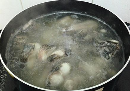 Cá lóc đồng cắt từng miếng vừa, luộc trên bếp vừa chin tới
