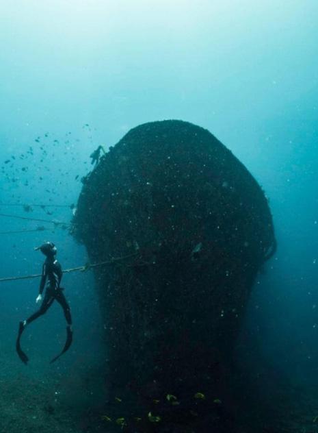 Cảnh ngoạn mục của xác tàu đắm dưới đáy biển Bali - Ảnh 3.